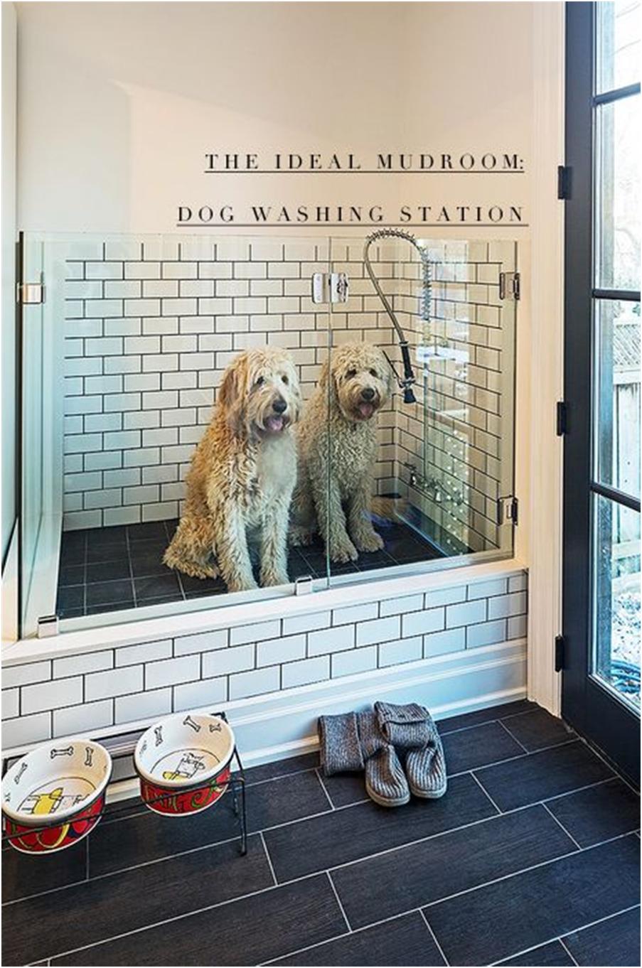 Ванна для мытья собаки своими руками